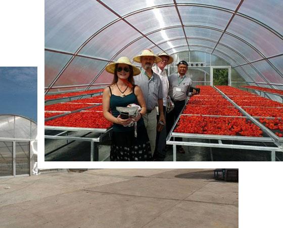 History | Natural Farm Fresh Myanmar Co , Ltd